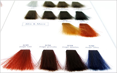 hair color swatch - Color Tips Of Hair