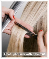 Blonde hair being cut