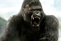 Side king kong 1