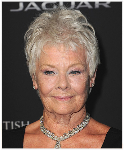 Judi Dench Short Straight Hairstyle - Light Grey.