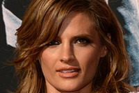 Stana katic makeup for golden brown hairstyles side